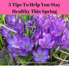 """5 Tips to Help You Stay Healthy This SPRING! Spring Cleaning is more than washing windows! Many of us think of giving the house a good clean when we think of Spring.It is also important to do a little """"Spring Cleaning"""" for your body and mind too!"""