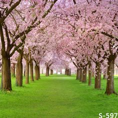 Find More Background Information about 200*300CM(6.5*10FT)Kate Custom Landscape Backdrops Photography Backgrounds Fotografia Spring Vinyl Backdrops For Photography,High Quality vinyl placemat,China vinyl corset Suppliers, Cheap backdrop stand from Marry wang on Aliexpress.com
