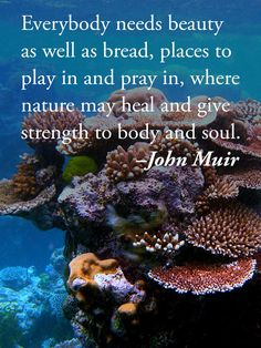 Everybody needs beauty as well as bread, places to play in and pray in, where nature may heal and give strength to body and soul. –John Muir  #scuba #diving #quotes #inspirationalquotes