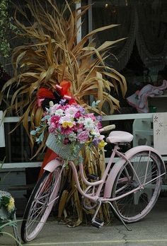 pip flowers and bike