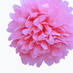 Dress My Cupcake 14-Inch Baby Pink Tissue Paper Pom Poms, Set of 4 * To view further, visit : Baking tools