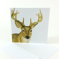 1 Watercolor Whitetail Deer Card  Watercolor by LauraAshtonArtist