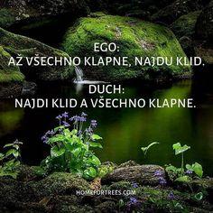 Carpe Diem, Motto, Advice, My Love, Words, Quotes, Life, Inspiration, Buddha