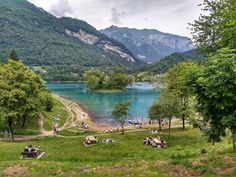 Lago di Tenno in Italien Lake Garda, Swiss Alps, Celebration Quotes, Architecture Design, Golf Courses, Wanderlust, Activities, Humor, Italia