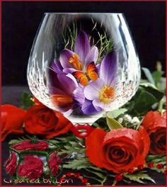 Kimi template customized by rosettabuccino. Original created by Photo Background Images, Photo Backgrounds, Wine Glass Images, Montreal Botanical Garden, Rose Pictures, Glass Photo, Drinking Glass, Wine Gifts, Beautiful Roses