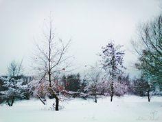 Beautiful Snow by sotiria8 on DeviantArt