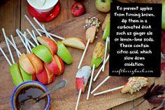 Craftberry Bush: Tastes of the Seasons - Caramel Apple Bar