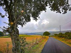 Rumbo al Monte do Faro en las inmediaciones de #Penasillás, en la etapa 8 del #CaminodeInvierno  #jakobsweg #stjamesway #theway #pilgerweg #pilgern  #iperegrinos  #pilgrims #caminosantiago #caminodesantiago #elcaminodesantiago #buencamino #pilgrimage #peregrina #peregrinacion #ultreia #peregrinos #peregrina #senderismo #trekking  #hiking  #viaje #travel #walking #wayofstjames