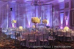 Mark + Daniela   Absolutely Fitting   Suit   Tuxedo   Orlando, FL   Groom   Bride   Groomsmen   Waldorf Astoria Orlando