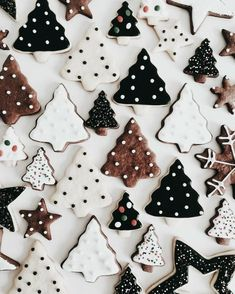 Try our Christmas advent biscuits recipe. Make super simple homemade gingerbread Advent biscuits for Christmas with this easy Christmas cookie recipe. Christmas Tree Cookies, Christmas Mood, Merry Little Christmas, Noel Christmas, Christmas Treats, Christmas Baking, Christmas Decorations, Xmas Cookies, Christmas Biscuits