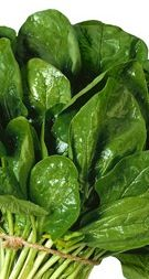 SPINACH (supports skin cell turnover)