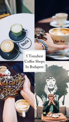 Budapest coffee Shops Coffee Shops, Budapest, Adventure Travel, Travel Tips, Travel Advice, Adventure Trips