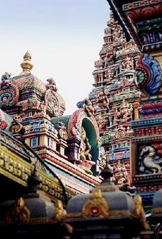 Sri Mariamman Temple (Indian, Hindu temple), which was built in the 1860s by Tamil immigrants