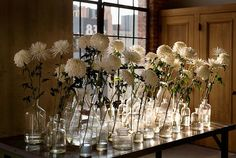 centerpieces. by tom mannion.