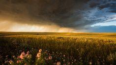 Die Great Plains östlich der Rocky Mountains in Nordamerika produzieren einige der schönsten Stürme, Superzellen und Wolkenstrukturen der Welt. Nicolaus Wegner hat einige aufgenommen und für uns zusammengestellt.