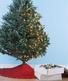 The Art of Christmas Tree Lighting | Real Simple - Seriously- WHY do people wrap the tree in circles? This makes so much more sense!