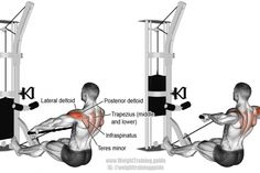 Cable rear delt row exercise