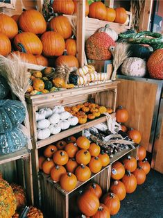 How many pumpkins are you getting this year? We're so excited for all the fall t… How many pumpkins are you getting this year? We're so excited for all the fall things! Autumn Aesthetic, Autumn Cozy, Happy Fall Y'all, Fall Pictures, Hello Autumn, Autumn Inspiration, Santorini, Fall Season, Fall Halloween