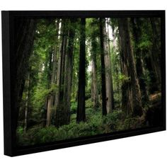 ArtWall Kevin Calkins Among the Giants Gallery-Wrapped Floater-Framed Canvas, Size: 12 x 18, Green