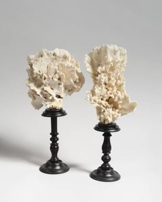 20th Century Two White Corals Mounted 2