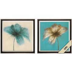 Floral Burst ( #4763 ) 2 styles - 23H  X 23W  X 2D  #96034763 $114.99 EACH SOLD SEPARATELY www.lambertpaint.com
