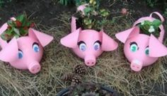 Plastic Bottle Piggy Planter is Perfect For Your Garden | The WHOot