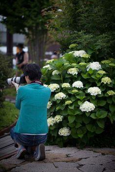"""""""屋上"""" 23.May.2015 まだまだ撮影。博多に戻って、博多シティの屋上で〜♪ 紫陽花の季節がやってきましたね♡"""