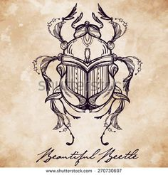 Beautiful hand drawn antique Scarab Beetle, insect. Vintage style tattoo vector. Engraving romantic collection illustration isolated, aged card background. Print, fabric design. Elegant decoration.