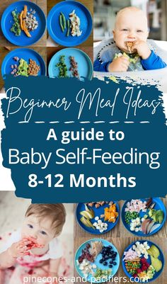 A guide to easy and simple self-feeding meal ideas for 8-12 months old. Self-feeding meal ideas and tips for solids with 8-12 month old babies. How to get started, what foods to serve, and food ideas with pictures for meal time inspiration. #babyfood #babyledweaning #toddlermeals Baby Self Feeding, Baby Feeding Schedule, 8 Month Old Food, Advice For New Moms, Healthy Toddler Meals, Meal Ideas, Food Ideas, Preparing For Baby, Baby Led Weaning