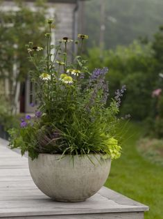 40 Cozy Decorative Garden Planters Design Ideas - All About Gardens Container Flowers, Container Plants, Container Gardening, Small Gardens, Outdoor Gardens, Garden Planters, Planter Pots, Fresco, Garden Show