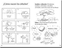 Arbol con sus partes para colorear - Imagui Family Worksheet, Voice Levels, Spanish Class, Super Powers, Peace And Love, Acting, Homeschool, Teacher, Science