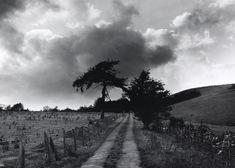 Fay Godwin photography