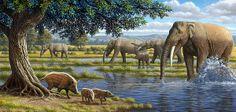 Mammals Of The Miocene Era, Artwork  Artwork: #39494 of 79790 by Mauricio Anton