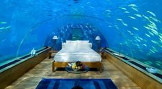 Bucket List: Stay in one of these underwater hotel rooms!!
