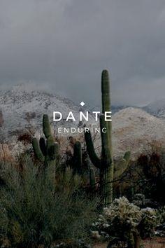 ari and dante trash - name meanings
