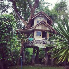 Imagem de house