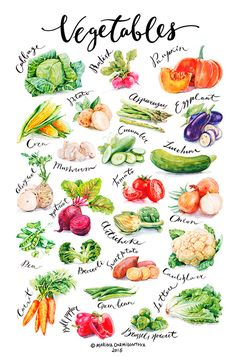 Vegetables on Behance Fruit And Veg, Fruits And Veggies, Vegetable Drawing, Recipe Drawing, Food Sketch, Watercolor Fruit, Watercolor Painting, Food Painting, Food Drawing