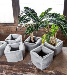 Plantador concreto graso / objeto de arte / por INSEKDESIGN