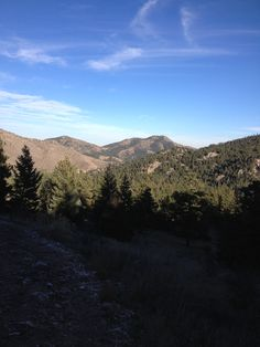 bear creek trail. Morrison/Lakewood CO