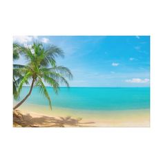 PixDezines tropical paradise Stretched Canvas Print