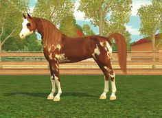 Sims 3 Horse Breeds | Traits: Genius, Brave , Agile