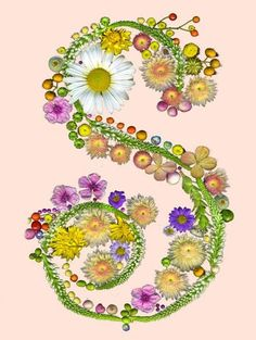 Cute Wallpapers First Initial Letter A Letter S With Flowers Our Family Letters M B F R D
