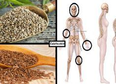 Ecco cosa accade al tuo corpo se mangi tutti i giorni la combinazione perfetta di questi semi...
