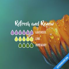 Refresh and Renew - Essential Oil Diffuser Blend