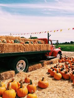 Autumn Cozy, Fall Winter, October Country, Autumn Aesthetic, Orange Aesthetic, Autumn Scenes, Happy Fall Y'all, Fall Photos, Autumn Pictures