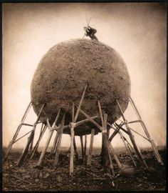 The Architect's Brother. I love Robert and Shana Parkeharrison's photography.