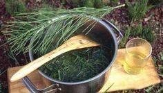 Polish Recipes, Slim Body, Preserves, Healthy Living, Health And Beauty, Food And Drink, Healing, Herbs, Healthy Recipes
