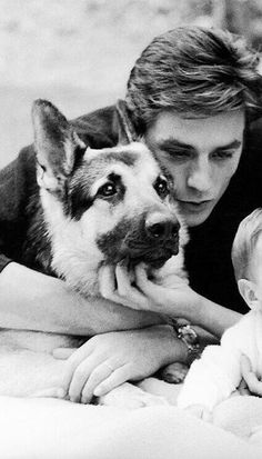 Vintage Male GIFs And Faceclaims - Alain Delon - Страница 2 - Wattpad Alain Delon, Romy Schneider, Anouchka Delon, Celebrity Dogs, Juliette Binoche, Cinema, Actors, Mans Best Friend, Old Hollywood