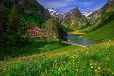 まるで天国!スイス絶景の湖畔に泊まる!「ベルグガストハウス・ゼーアルプゼー」                                                                                                                                                                                 もっと見る