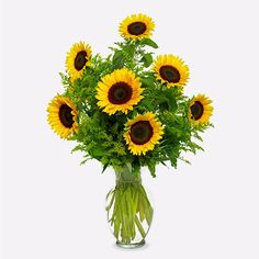 Send flowers from a real Berkeley, CA local florist. Lee's Florist & Nursery has a large selection of gorgeous floral arrangements and bouquets. We offer same-day flower deliveries for flowers. Send Flowers, Fall Flowers, Flower Bouquets, Tropical Floral Arrangements, Flower Arrangements, Online Florist, Same Day Flower Delivery, Amazing Gardens, Flower Decorations